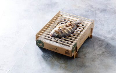 The best single-use disposable grill